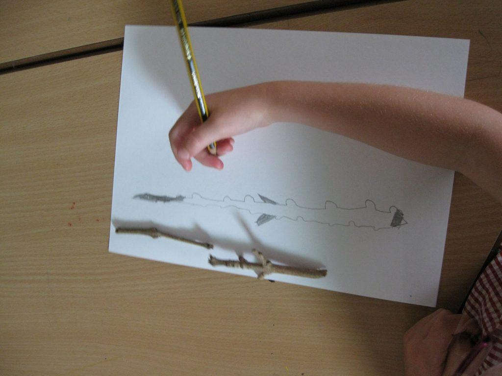 illustrator-2