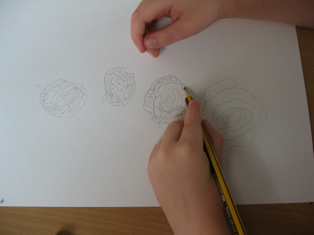 illustrator-7